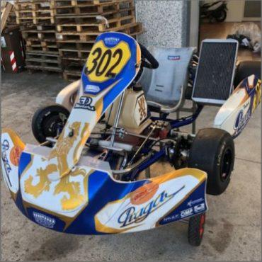 Kart KZ / KZ2- folosit